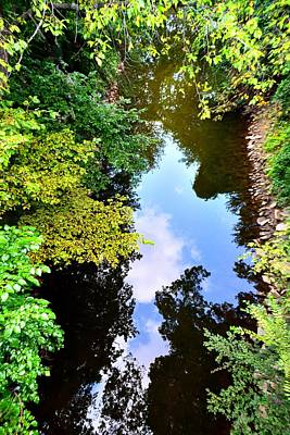 Photograph - Reflections by EDi by Darlene
