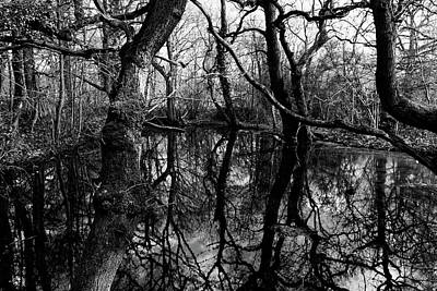 Photograph - Reflections by David Harding