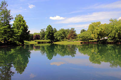Photograph - Reflections In A Pond by Angela Murdock