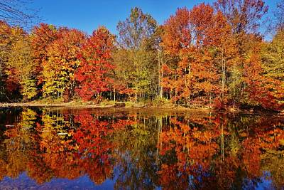 Photograph - Reflections In Autumn by Ed Sweeney