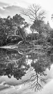 Photograph - Reflections In Black And White by Harold Rau