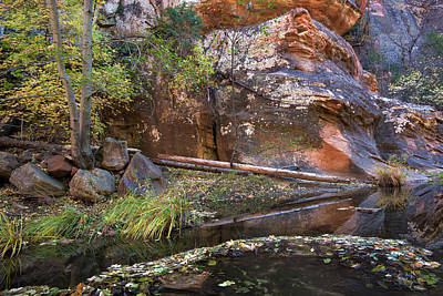 Photograph - Reflections In Oak Creek Canyon Arizona by Dave Dilli