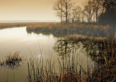 Lake Murray Photograph - Reflections In Spring Morning by Iris Greenwell