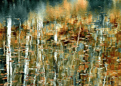Photograph - Reflections In Teal by Ann Bridges
