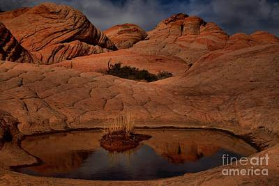 Photograph - Reflections In The Candy Cliffs by Adam Jewell
