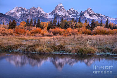 Photograph - Reflections In The Fall Willows by Adam Jewell