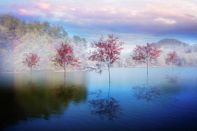 Reflections In The Lake Art Print