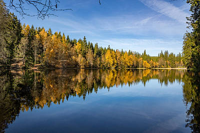 Photograph - Reflections In The Silberteich, Harz by Andreas Levi