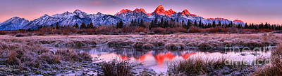 Photograph - Reflections In The Teton Willows Panorama by Adam Jewell
