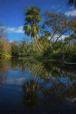 Photograph - Reflections In The Tropics Watercolors Painting by Debra and Dave Vanderlaan