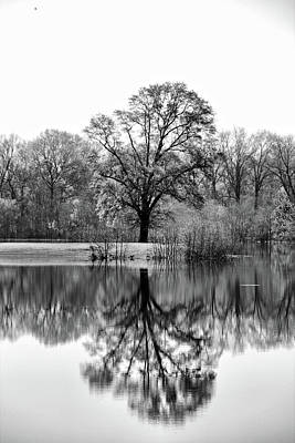Photograph - Reflections In The Water by Greg Sharpe