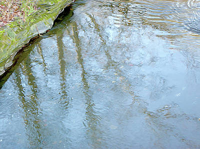 Photograph - Reflections In The Water by Linda Carruth