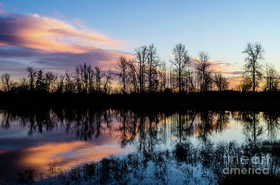 Photograph - Reflections In Time by Nick Boren