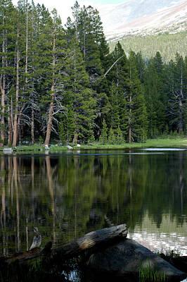 Paint Photograph - Reflections In Yosemite Dark Waters by LeeAnn McLaneGoetz McLaneGoetzStudioLLCcom