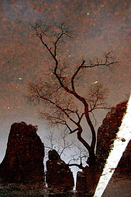 Photograph - Reflections In Zion by Daniel Woodrum