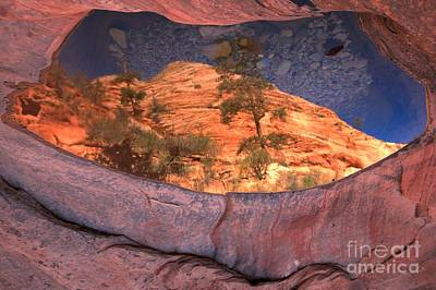 Photograph - Reflections In Zion East Canyons by Adam Jewell