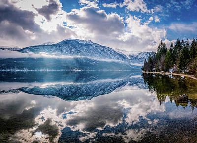 Photograph - Reflections  by Michael Damiani