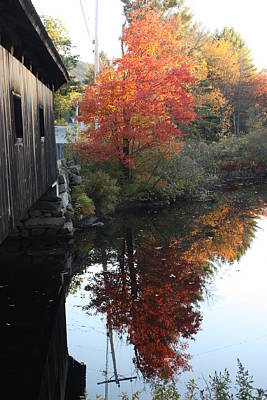 Reflections New Hampshire Art Print by Sue Mayor