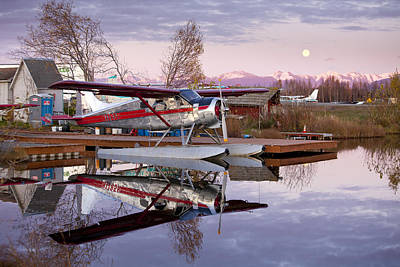 Float Plane Photograph - Reflections Of A Beaver by Tim Grams