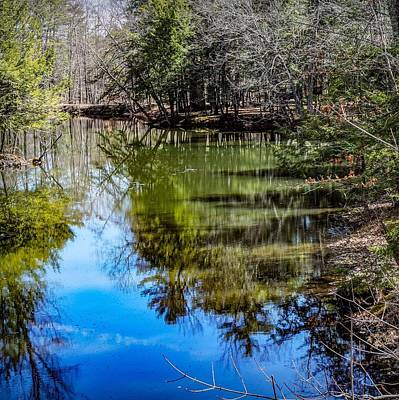 Photograph - Reflections Of A Clear Blue Sky by Kendall McKernon