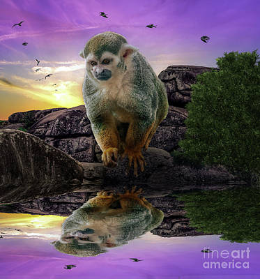 Digital Art - Reflections Of A Squirrel Monkey by Rob Sellers