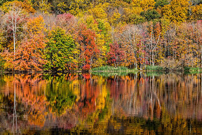 Photograph - Reflections Of Autumn by Karol Livote
