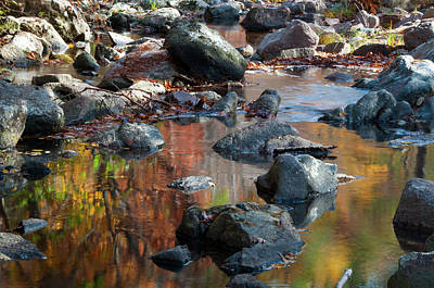 Photograph - Reflections Of Autumn by Steve Stuller