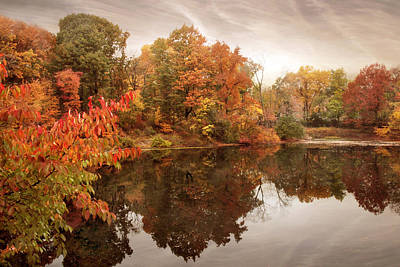 Photograph - Reflections Of Autumn's End by Jessica Jenney