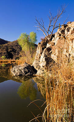 Photograph - Reflections Of Burro Creek by Michael Smith-Sardior