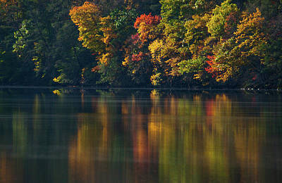 Reflections Of Colors Print by Karol Livote