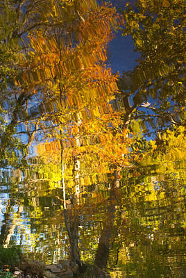 Photograph - Reflections Of Fall - Grasshopper Point by Bob Coates