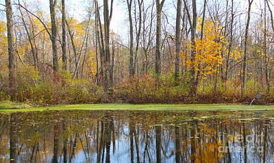 Reflections Of Fall Art Print by Art Kurgin