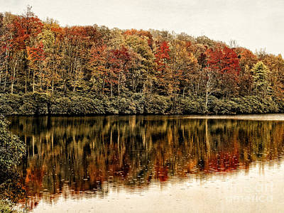 Photograph - Reflections Of Fall by Dawn Gari