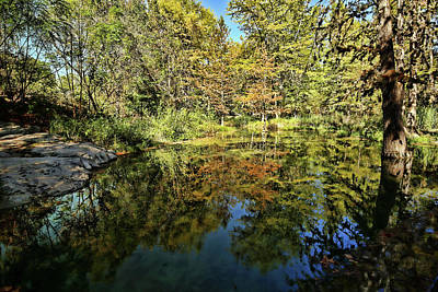 Photograph - Reflections Of Fall by Judy Vincent