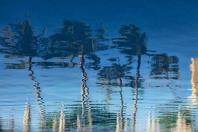 Reflections Of Hawaii Art Print by Susan Stone