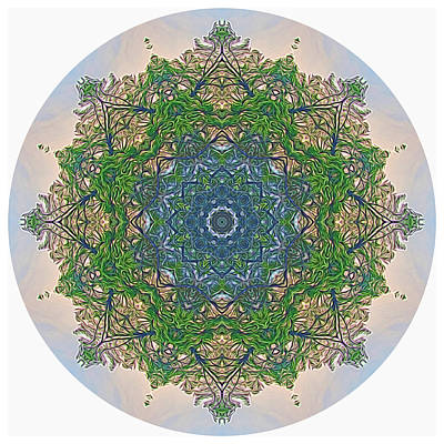 Digital Art - Reflections Of Life Mandala by Beth Sawickie