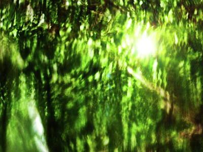 Photograph - Reflections Of Light by Jouko Lehto