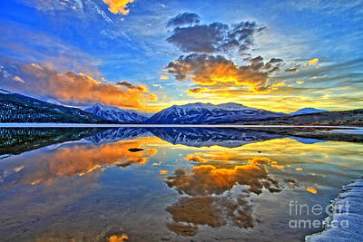 Photograph - Reflections Of Light by Scott Mahon