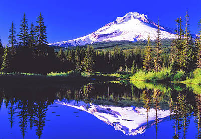 Photograph - Reflections Of Mount Hood by D O T