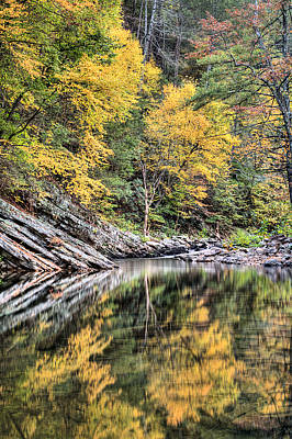 Photograph - Reflections Of Natural Color by JC Findley