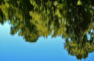 Photograph - Reflections Of Nature by Cynthia Guinn