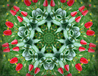 Kaleidoscope Photograph - Reflections Of Spring by Cricket Hackmann