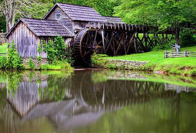 Photograph - Reflections Of Summer by Michael Scott