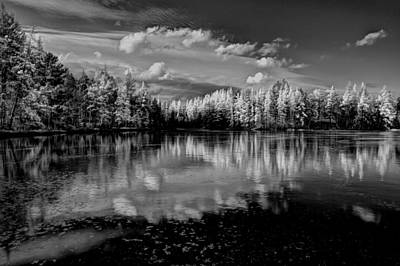 Photograph - Reflections Of Tamaracks by David Patterson