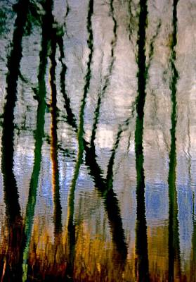 Reflections Of The Forrest Art Print by Gillis Cone