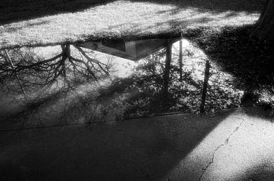 Photograph - Reflections Of Two Loves by Jeanette O'Toole