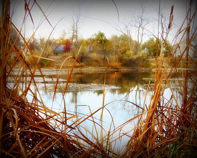 Fort Collins Photograph - Reflections On A Pond -3 by Diane M Dittus