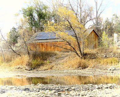 Fort Collins Photograph - Reflections On A Pond by Diane M Dittus
