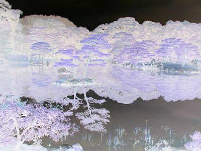 Reflections On A Surreal Pond Art Print by Curtis Schauer