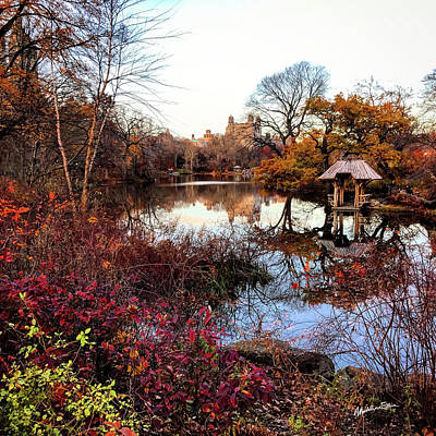 Art Print featuring the photograph Reflections On A Winter Day - Central Park by Madeline Ellis